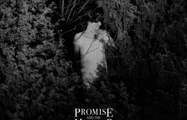 promise and the monster - transparent knives