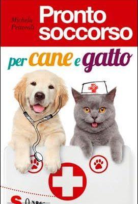Pronto soccorso per cane e gatto guida